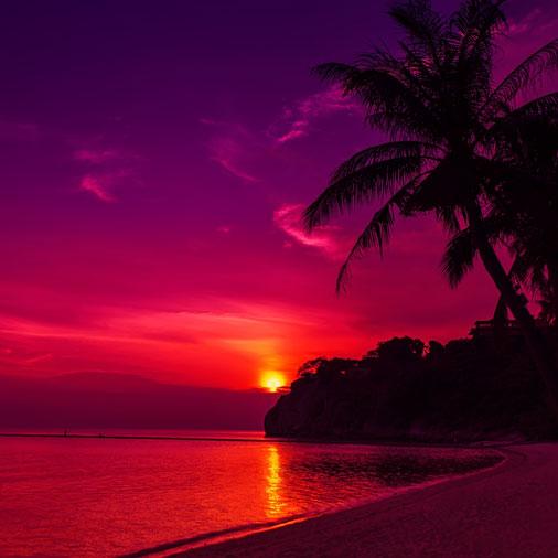 Postcard Sunset Views